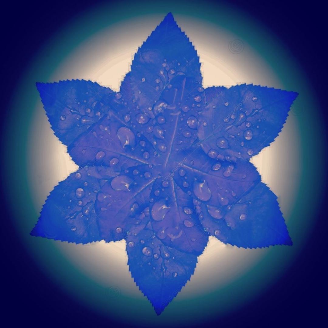 LA BANDIERA   un drago, una stella, un'isola che non c'è